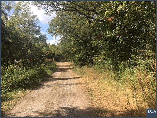 Une ancienne route romaine près de la demeure de Bill est encore utilisée